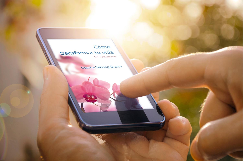 Compoasicion-eBook-iPhone